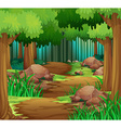 scene with hiking track in forest vector image vector image