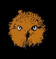 head owl vector image vector image