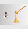 honey on dipper and bee realistic vector image vector image