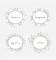 collection of frames with berries and leaves vector image vector image