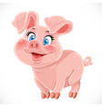 Cute cartoon happy baby pig vector image