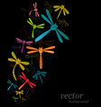 Dragonfly design vector image