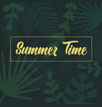 summer time lettering text on palm tropical leaves vector image