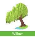 Willow cartoon tree vector image vector image