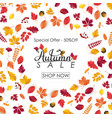 autumn sale background with falling leaves vector image vector image