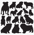 bulldog silhouettes vector image vector image
