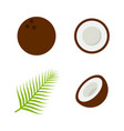 coconut icon flat style eps10 vector image vector image