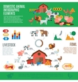 Domestic Animals Infographics vector image vector image