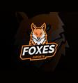 fox logo mascot sport vector image vector image