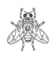 mechanical fly animal engraving vector image vector image