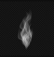 abstract transparent smoke vector image vector image