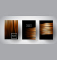 brochure templates with gold stripe designs vector image