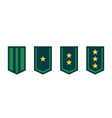 military ranks or army epaulettes on white vector image