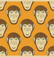 monkey head seamless stylized background for vector image