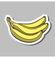 BananaSticker vector image vector image