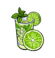 half lime and glass of juice mojito cocktail vector image vector image