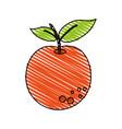 juicy fresh fruit cartoon vector image vector image