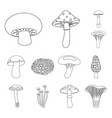 poisonous and edible mushroom outline icons in set vector image