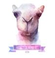 set watercolor cute camel vector image vector image