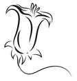 simple black and white sketch of a lily flower on vector image vector image
