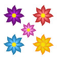 templates bright colored stylized flowers vector image vector image