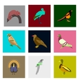 Set of in flat style birds vector image vector image
