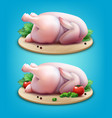 two whole raw chickens with vector image vector image