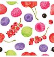 Berries seamless pattern vector image