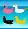 animal pool float swimming ring ride vector image
