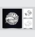 betta fish artwork vector image