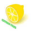 citrus allergen free icon isometric style vector image vector image