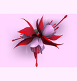 fuchsia on pink background vector image vector image