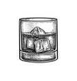 ink sketch whiskey glass vector image vector image