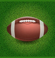 american football of the ball vector image vector image