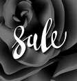 black rose modern sale lettering vector image