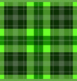 seamless green tartan - white stripes vector image vector image