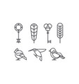set of keys leaves and birds hummingbird vector image vector image