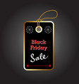 ticket for black friday vector image vector image