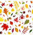 autumn leaves acorns and chestnut seamless vector image
