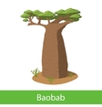 Baobab cartoon tree vector image vector image