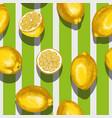 fruit lemon seamless texture wallpaper vector image