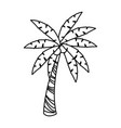 palm tree tropical natural leaves image vector image vector image