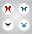 set of beauty realistic symbols with tailed-blue vector image vector image