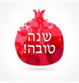 shana tova pomegranate card design vector image