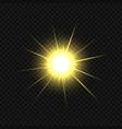 golden star burst vector image