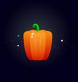 fresh juicy pepper vegetable vector image