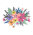 colourful flowers design vector image