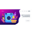dry cleaning and laundering concept landing page vector image vector image
