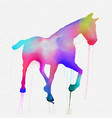 hand painted horse silhouette in bright colours vector image