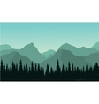 Night forest with fir trees silhouettes vector image